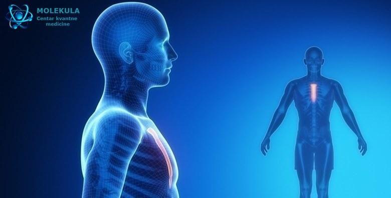 Detaljna kvantna analiza  pregledom svih organa i sustava pronalazi se uzrok bolesti te daje siroka preporuka za oporavak organizma za 1 500 kn